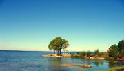 Лучшие загородные  участки на побережье Плещеева озера.