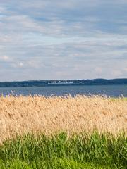 Продажа земли в Ярославской области возле Плещеева озера.