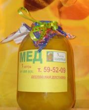 мёд продам от 260р за кг 8915-9777-199